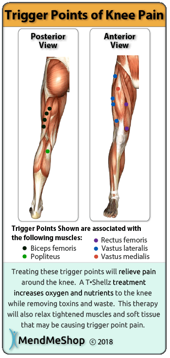 Human body trigger points result from toxins and waste build up in a tight muscle.